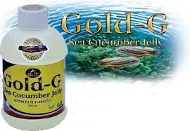 Obat Infeksi Usus Jelly Gamat Gold G